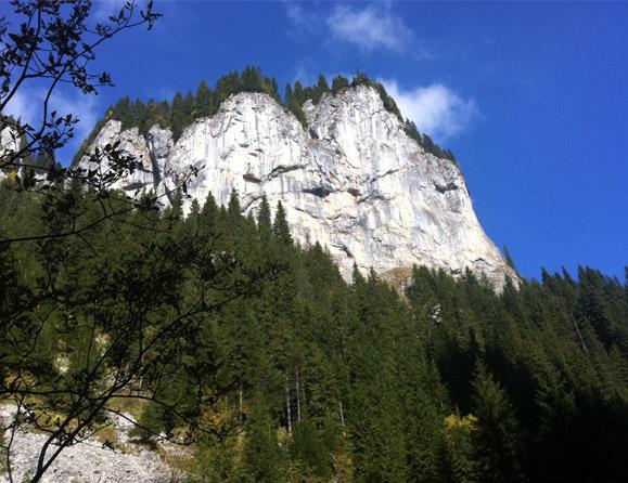 gehende-meditation-31-579x446